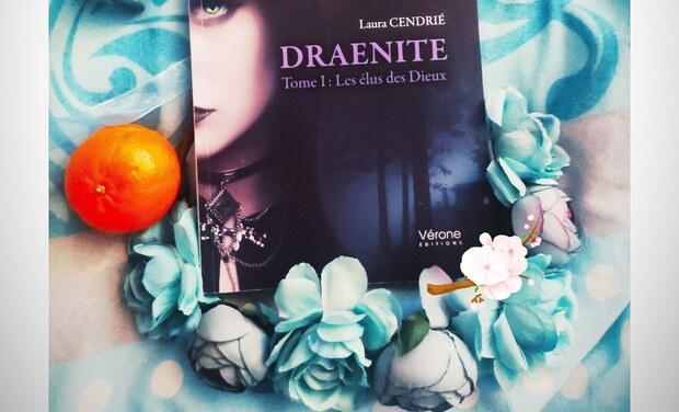 Project visual Livre Draénite