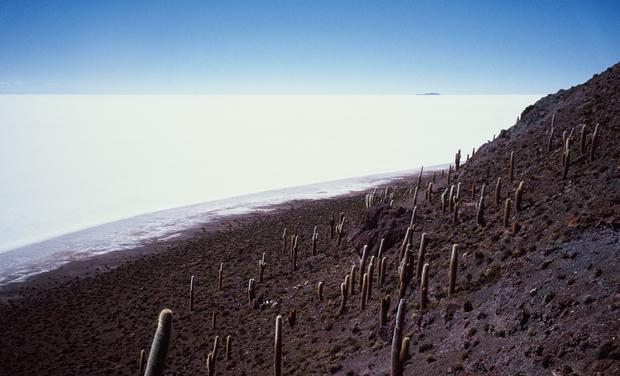 Visueel van project Captifs du Salar de Uyuni, le premier livre de Gérard de Frayssinet