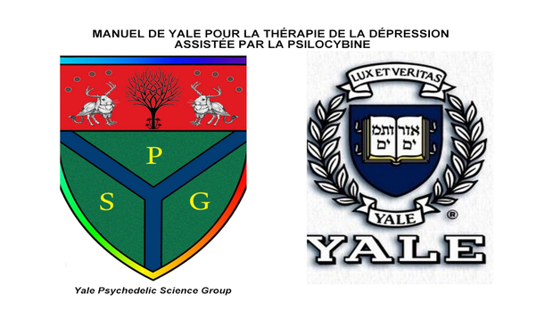 Visueel van project 'YALE MANUAL FOR PSILOCYBIN-ASSISTED THERAPY OF DEPRESSION' into French