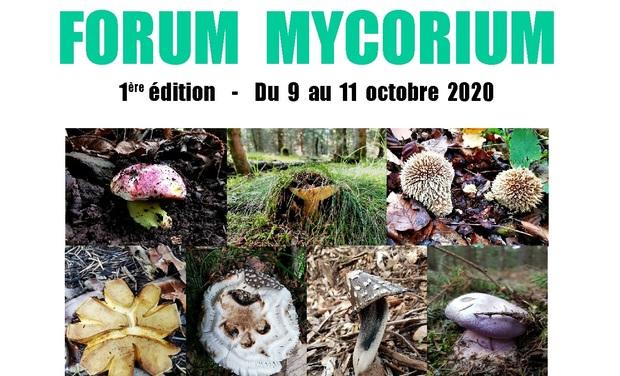 Visuel du projet FORUM MYCORIUM - 1ère EDITION