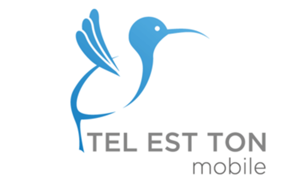 Project visual Tel est ton Mobile