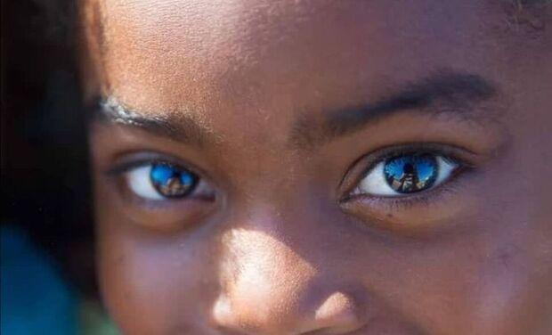 """Project visual Exposition """"Madagascar, les yeux dans les yeux"""""""