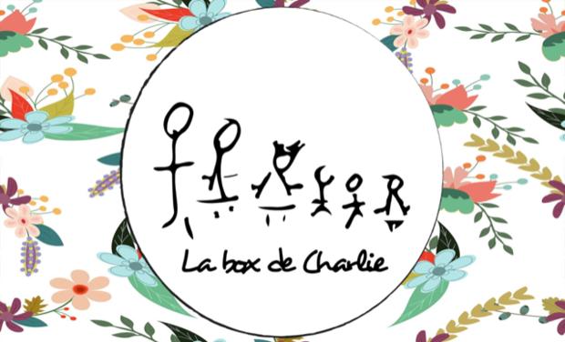 Project visual La box de Charlie