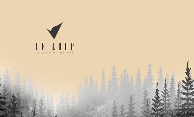Project visual Le Loup Coworking Beauté
