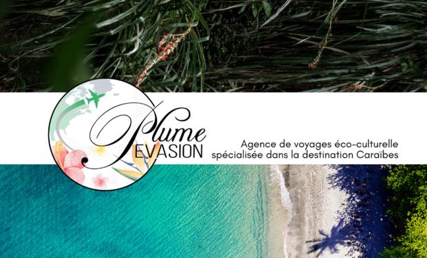 Project visual Plume Evasion
