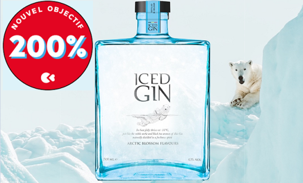 Project visual Iced Gin : the gin from the Arctic that is enjoyed iced-cold !
