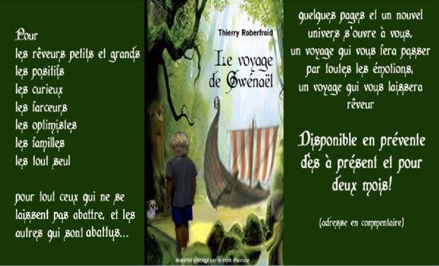 Project visual Le voyage de Gwénaël