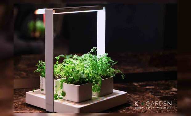 Project visual KIGARDEN