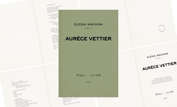 Project visual Elegia Machina : poésie et algorithmes