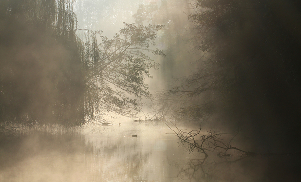 Project visual Film « Campagnes, quand l'Homme renoue avec la nature »