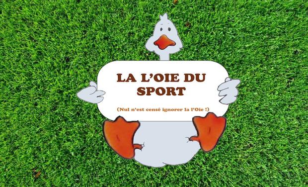 Project visual La l'Oie Du Sport, Jeu de fitness à domicile
