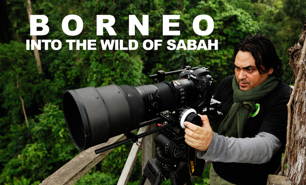 Visuel du projet BORNEO INTO THE WILD OF SABAH