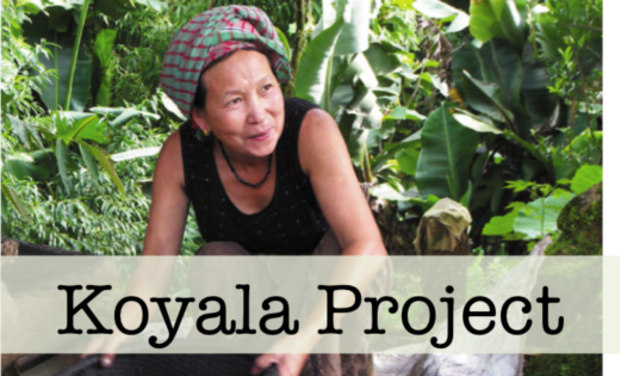 Visuel du projet KOYALA: an android app for rural India