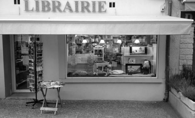 Visuel du projet Lançons ma librairie dans le sud !