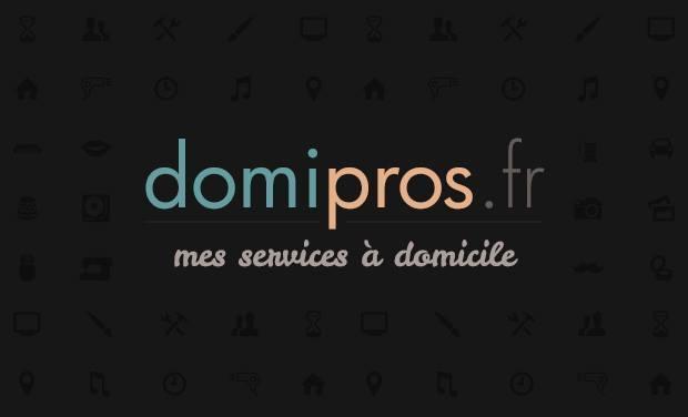 Large_domipro