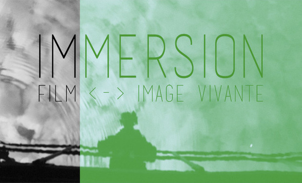 Project visual IMMERSION