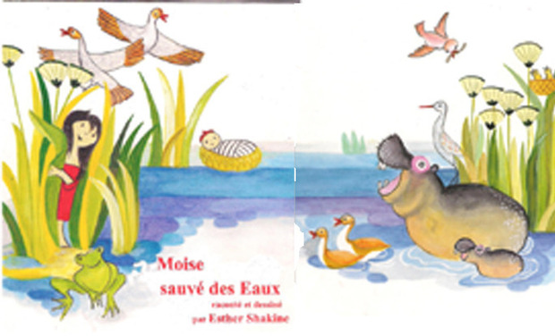 Project visual Moise sauve des eaux