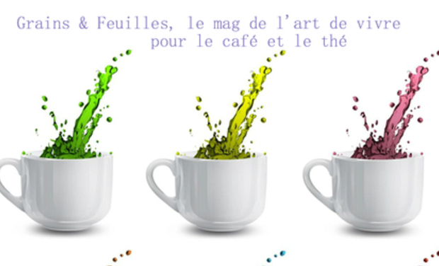Project visual Grains et Feuilles