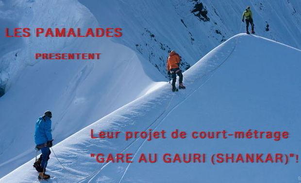Visuel du projet Gaurishankar : Un Court métrage professionnel de notre ascension en Himalaya.