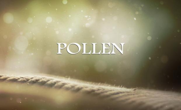 Large_pollen_sans_logo