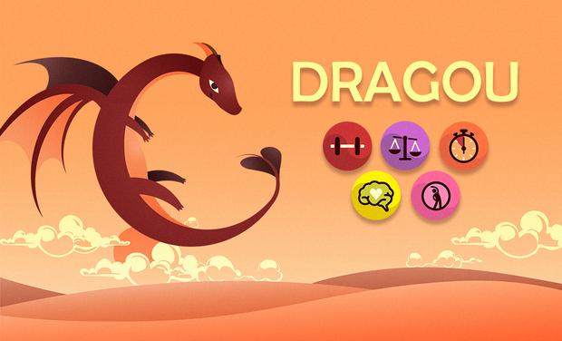 "Project visual L'application mobile ""Dragou"""