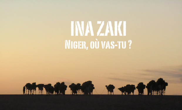 Project visual Ina zaki, Niger où vas-tu ?