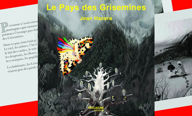 Project visual LE PAYS DES GRISEMINES