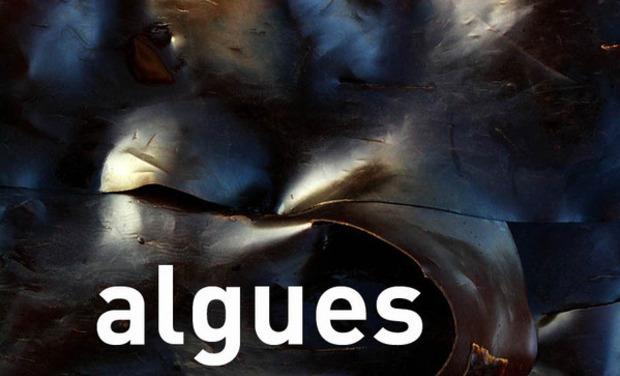 Large_algues3307a