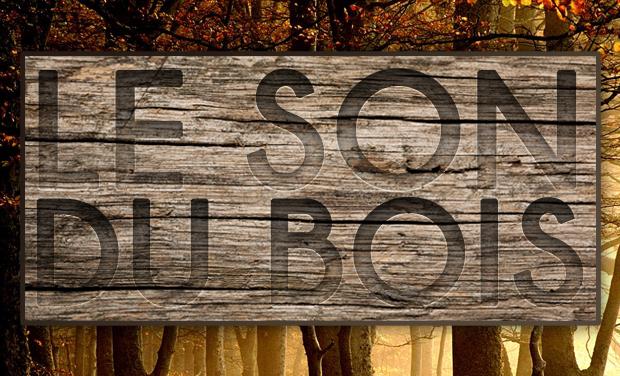 Visuel du projet Le Son du Bois : Court Métrage