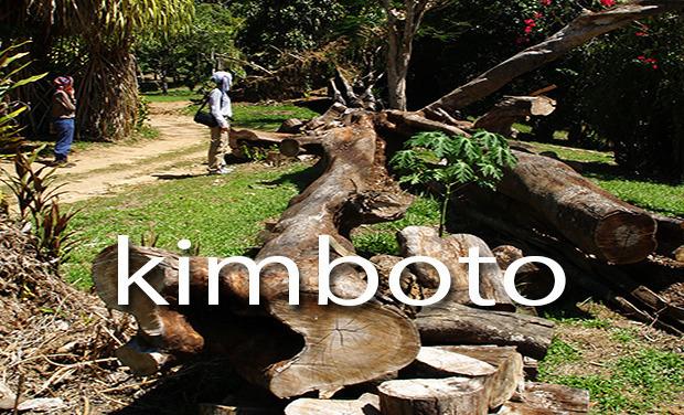 Project visual Kimboto