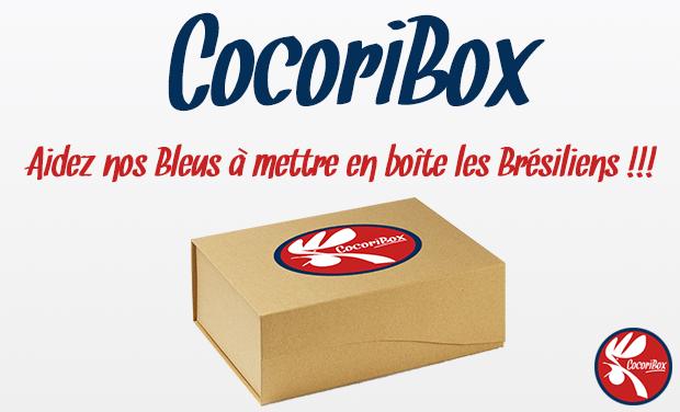 Visueel van project CocoriBox