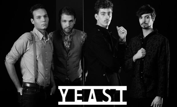 Large_yeast_09