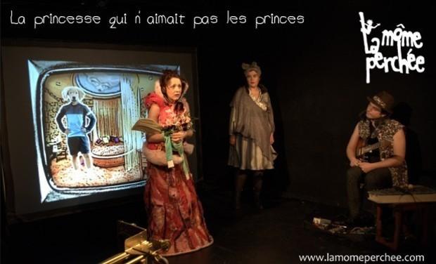 Visuel du projet La Princesse qui n'aimait pas les princes