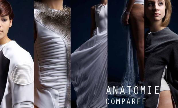 Visuel du projet Anatomie Comparée
