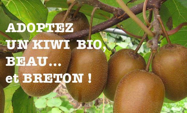Visuel du projet Votre Kiwi en Bretagne !