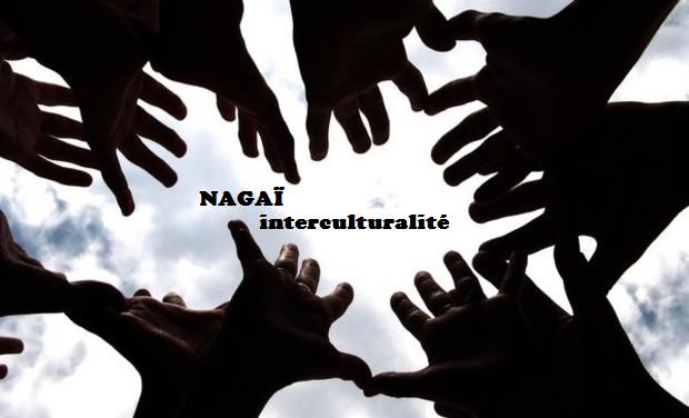 Visuel du projet Nagaï: entre jeunesse d'Ici et d'Ailleurs