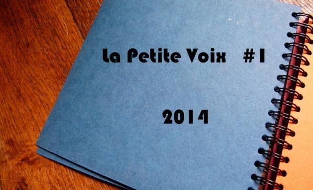 Visuel du projet La Petite Voix 2014