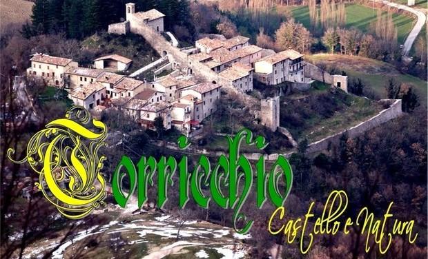 Project visual Torricchio