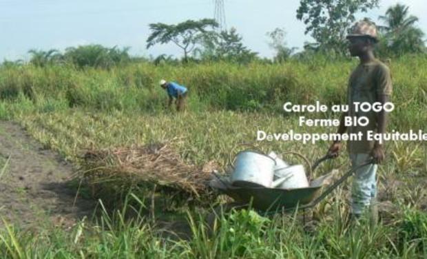 Project visual Carole, bénévole au Togo : mission humanitaire de développement durable et equitable