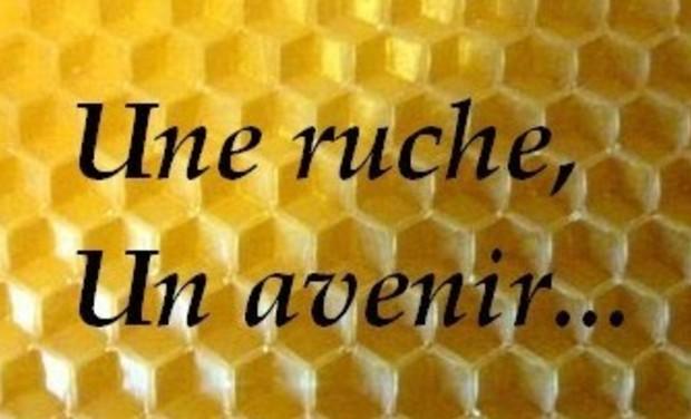 Visuel du projet Une ruche, un avenir