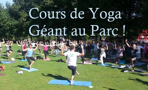 Large_cour_de_yoga_geant