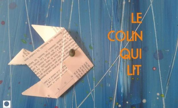 "Project visual LE COLIN QUI LIT, un ""contoir"" du voyage"
