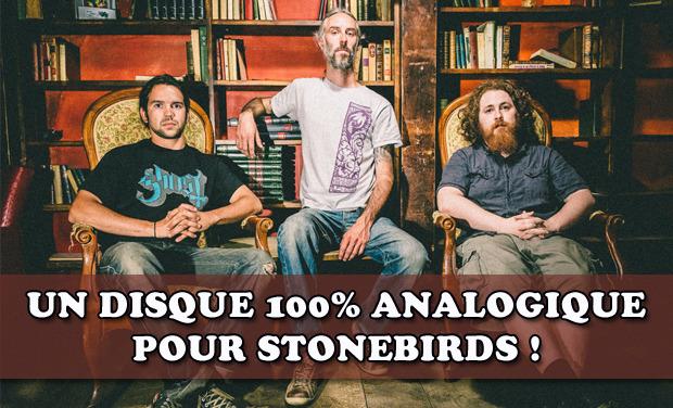 Project visual Un disque 100% analogique pour Stonebirds
