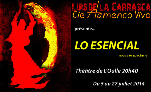 "Visueel van project Flamenco Vivo ""Lo Esencial"", nouveau spectacle au Festival Off d'Avignon"