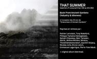 Widget_summer-visual