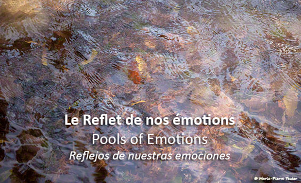 Large_pools-of-emotionstitle