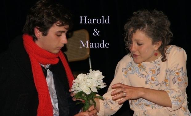 Visuel du projet Harold & Maude