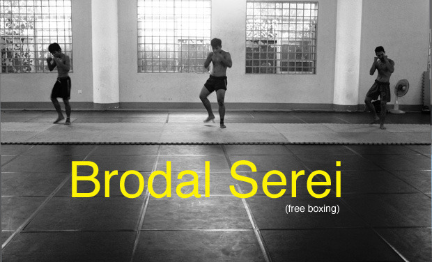 Project visual Brodal Serei