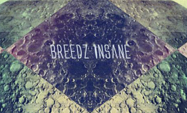 Visueel van project BREEDZ INSANE 1er EP