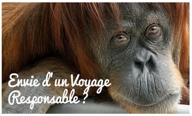 Large_visuel-voyage-responsable-620-376